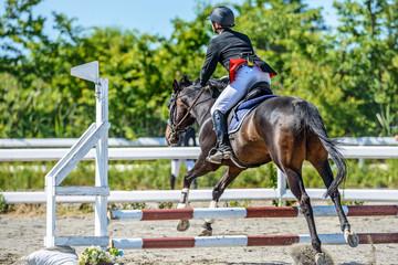 Photo sur Plexiglas Equitation 乗馬風景