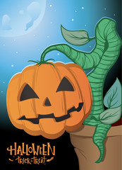 Colourful poster Halloween pumpkin growing out of the pot. Halloween poster with night and cool moon. Halloween trick or treat