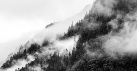 Mountain fogs