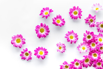 Floral pattern with pink flowers on white background top view