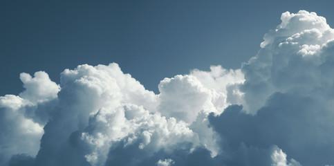 Cumulus cloud. Panorama.