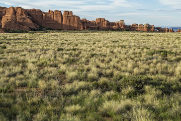 Grassland and rock formations, Arches National Park Utah