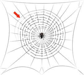 Spider web maze - find the way trough the cobweb labyrinth to the center where the spider is waiting for you - halloween fun game. Isolated vector comic illustration on white background.