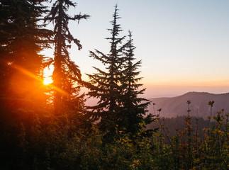 sunset in cascade mountain range