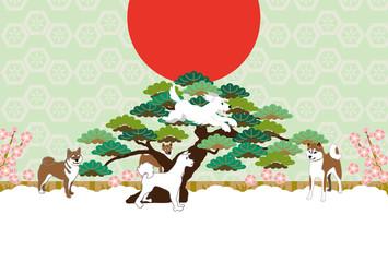 柴犬と松の木のイラストの和風ポストカード