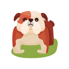 French bulldog dog, purebred pet animal standing on green grass colorful vector Illustration