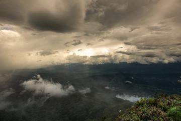 Tropical Rainforest in doi inthanon national park the morning light landscape view (Rainforest), Thailand