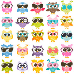 Set of colorful owls with glasses isolated on white