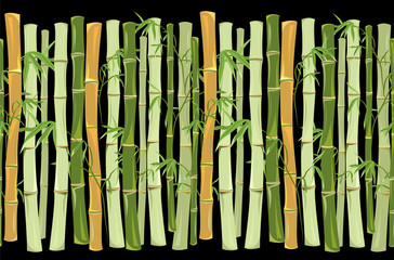 bamboo. horizontal seamless pattern