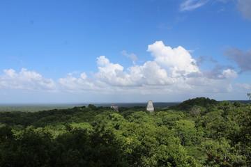 Tikal, piramidi e giungla