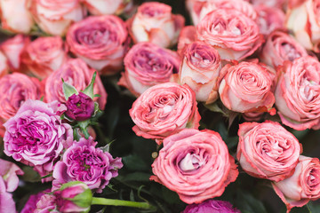 Pink roses on a flower market