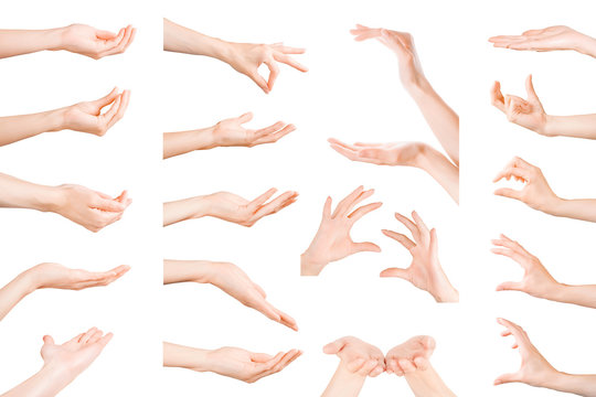 Set of woman hands showing, holding and supporting something. Isolated with clipping path