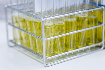 Backgrounds of Science research and Research microbiology in laboratory.