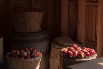 bushels of bright red apples, inside cider mill