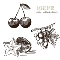 Cherry, star fruit, grapes -organic fruits drawings