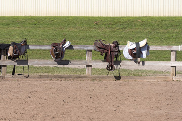 three saddles on a fence