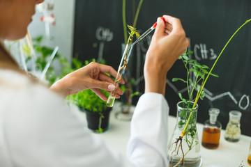 Biologist working in laboratory