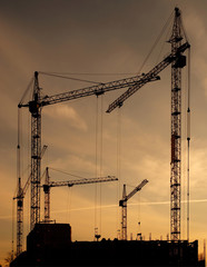 construction of a building by cranes