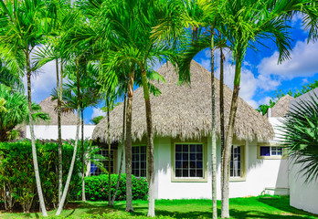 house with a roof made of palm branches