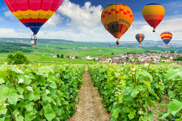 Poster Montgolfière / Dirigeable Colorful hot air balloons flying over champagne Vineyards at Montagne de Reims, France