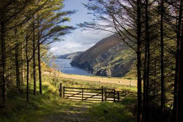 Rural coastline in the Isle of Man