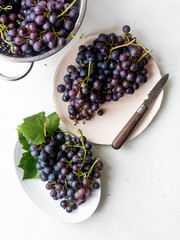 Blue grape harvest on pink plate
