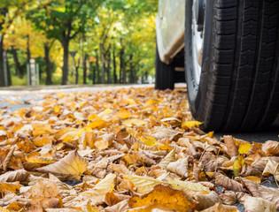 Straßen Gefahr im Herbst