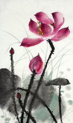 the lotus symbol of eternity