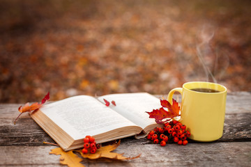 Book with open pages and cup with hot tea and red berries