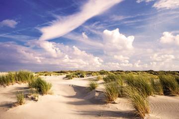 Wall Mural - Nordsee, Deutsche Küste, Strand auf Langenoog: Dünen, Meer, Entspannung, Ruhe, Erholung, Ferien, Urlaub, Meditation :)