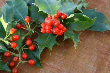 houx frais,feuilles et boules rouges,symbole de noël