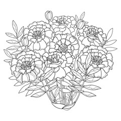 Vector bouquet with Tagetes or Marigold flower, bud and leaf in black isolated on white background. Ornate Tagetes flowers in contour style for summer design, coloring book, Mexican Day of the dead.