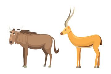 Antelope cartoon vector set. savanna animals vector illustration.