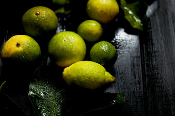 lemon on a branch and limes. on a black background. dark photo. water drops. wet fruit