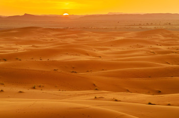 Erg Chebbi Sand dunes near Merzouga on sunset. Morocco