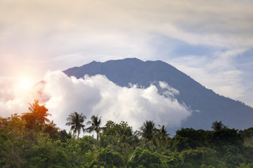 view through the jungle with palm trees on a volcano  Agung in clouds. Bali, Indonesia..