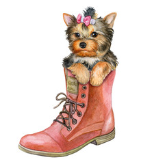 Puppy Yorkshire Terrier in a shoe. Funny little dog isolated on white background. Pink bow. Watercolor. Illustration. Template.