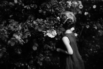 Black and white anonymous image of a small girl in a rose garden.