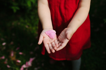 Anonymous image of a little girl in a red dress as she shows a petal in her hand.