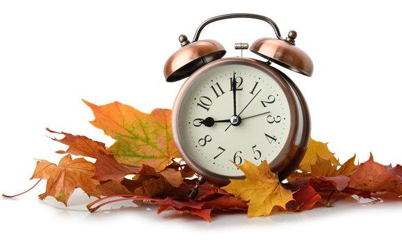 retro alarm clock in autumn leaves