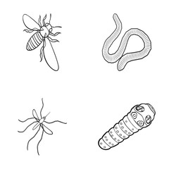 Arthropods insect mosquito, bee.Earth worm, caterpillar,vermicular set collection icons in outline style vector symbol stock isometric illustration web.