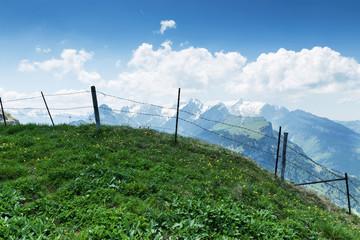Poster Heuvel Bergwiese vor Alpstein Massiv
