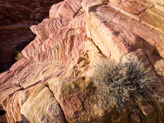 Closeup image of sandstone, Valley of Fire, Nevada, USA