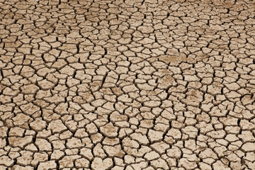 Dried Land Suffering from Drought