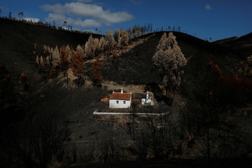 A shrine is seen after a forest fire near the village of Serta