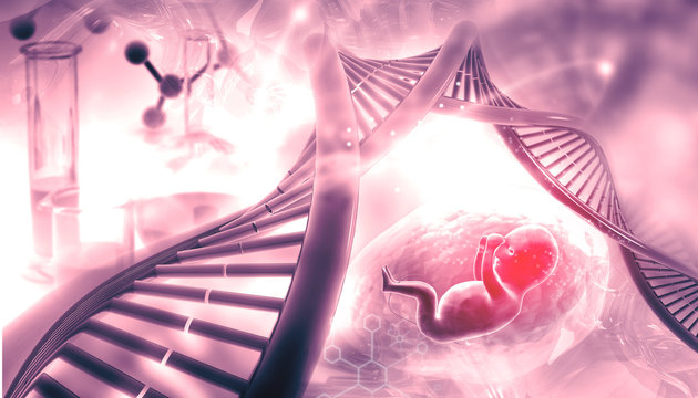 Fetal with DNA on abstract background. 3d illustration