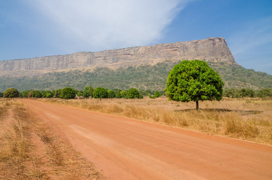 Red dirt and gravel road, single trees and large flat topped mountain in Fouta Djalon region, Guinea, West Africa