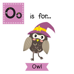 Cute children ABC alphabet O letter tracing flashcard of Owl with witch hat for kids learning English vocabulary in Happy Halloween Day theme.