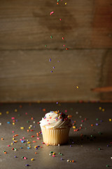 Vanilla cupcake with sprinkles.