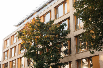 beautiful office building with autumn trees